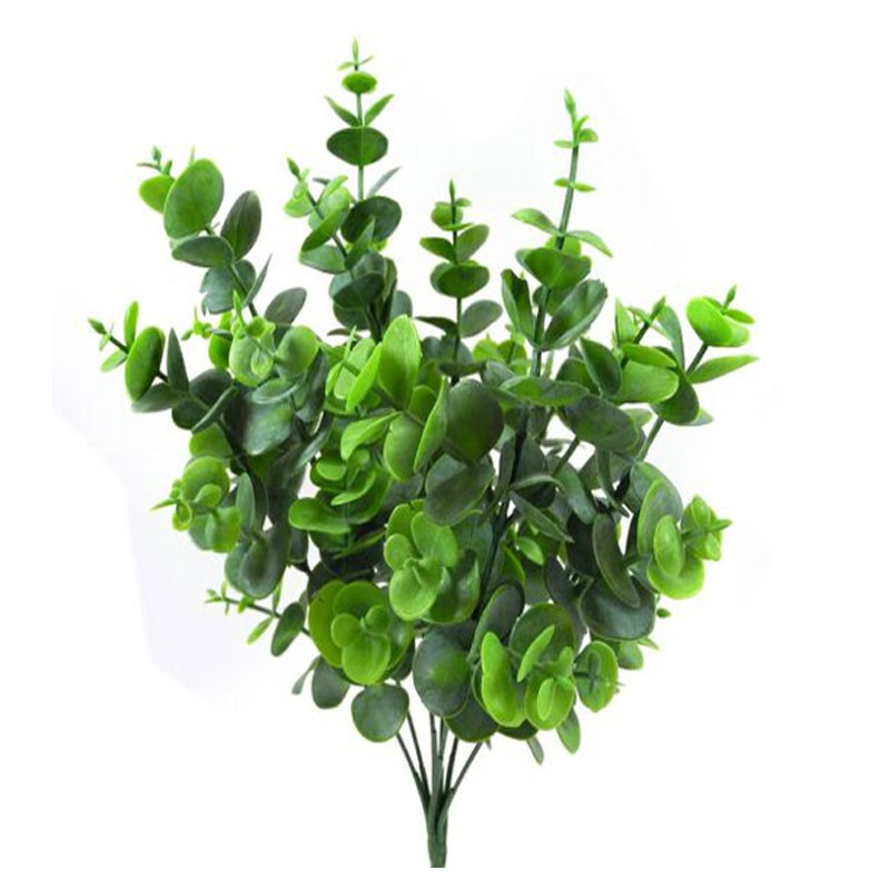 Ciuffo eucalipto 3 rami 13640019-01