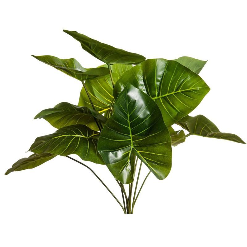 Mazzo Di Foglie Di Caladium Verde 11 pz cm 57 A20593