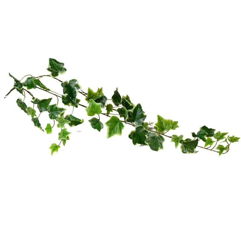 ramo edera variegata sintetico 39 foglie 112057-50
