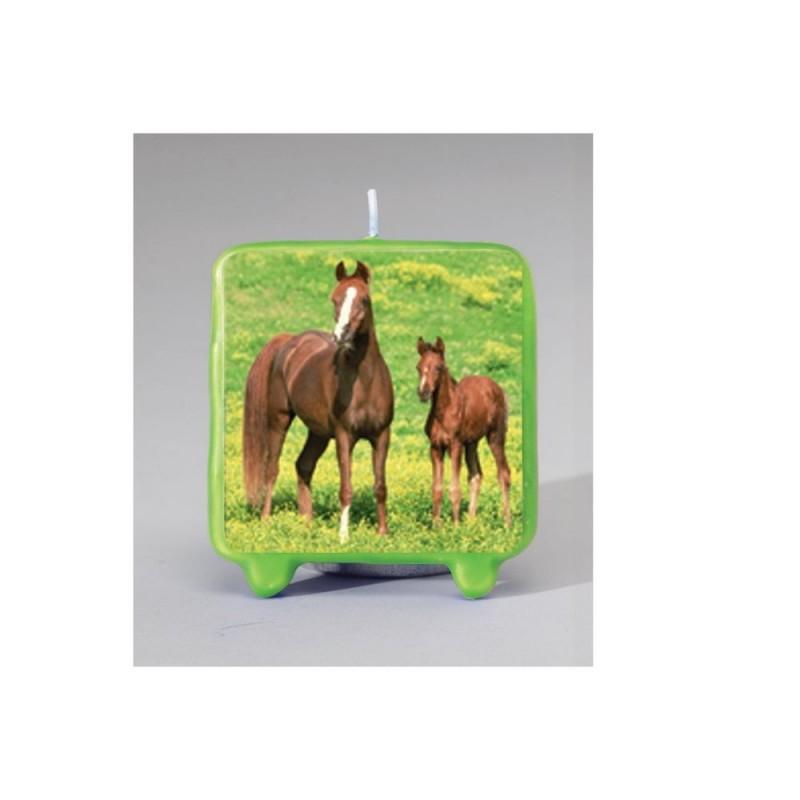 CANDELINA IN CERA TEMA CAVALLI CAKE DESIGN CAVALLO HORSE HORSES COMPLEANNO