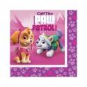 KIT N 24 - PAW PATROL GIRL - SKYE COORDINATO COMPLEANNO
