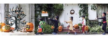 Addobbi da Giardino Halloween